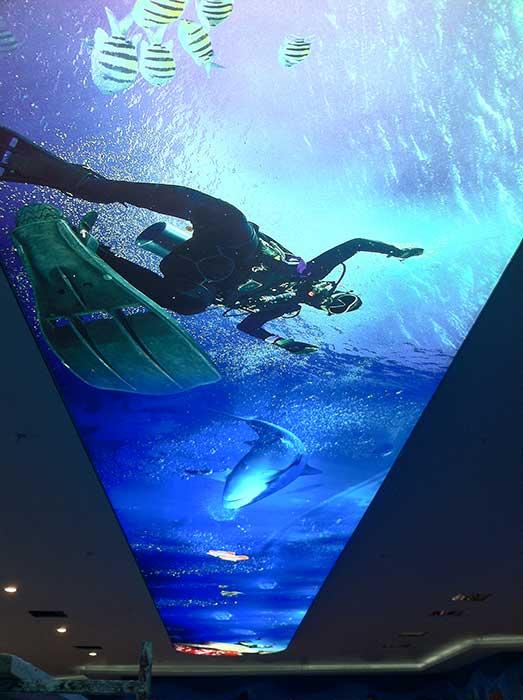 Manisa Dijital Baskı Gergi Tavan 3
